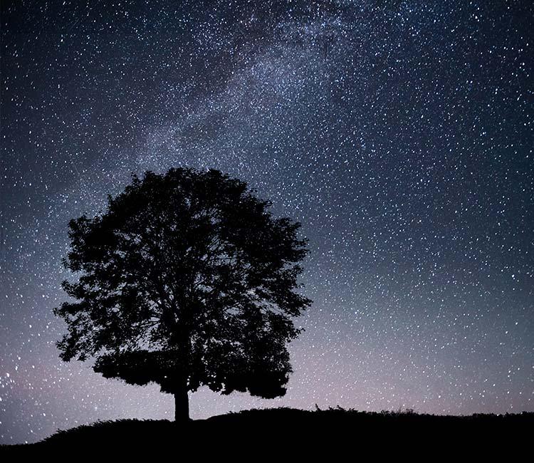Como disfrutar de una noche de estrellas