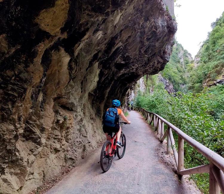 La Senda del Oso: Descubre la ruta más auténtica de Asturias